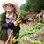 Sorrel & Lemon Thyme, юнисекс парфюмерия от Jo Malone